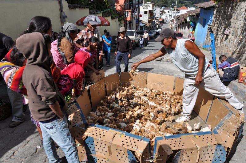 Día de mercado en Chichicastenango, Guatemala foto de archivo libre de regalías