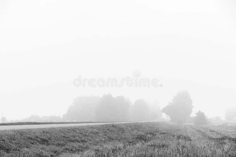 Día de niebla en una versión blanca negra fotos de archivo libres de regalías