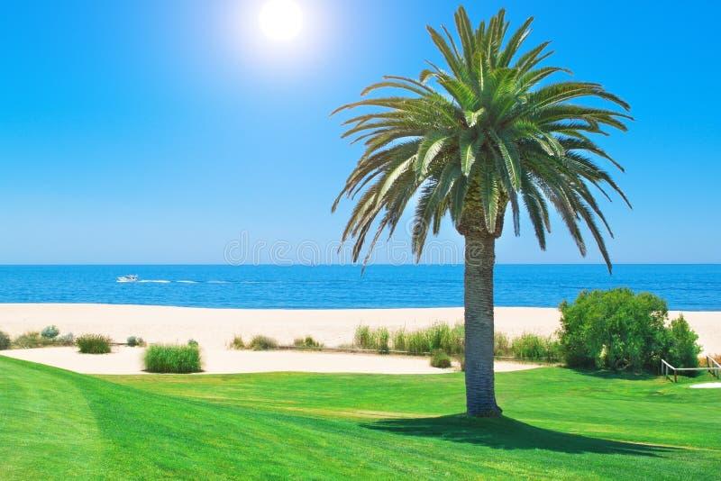 Día de verano en el campo de golf y el océano. fotos de archivo