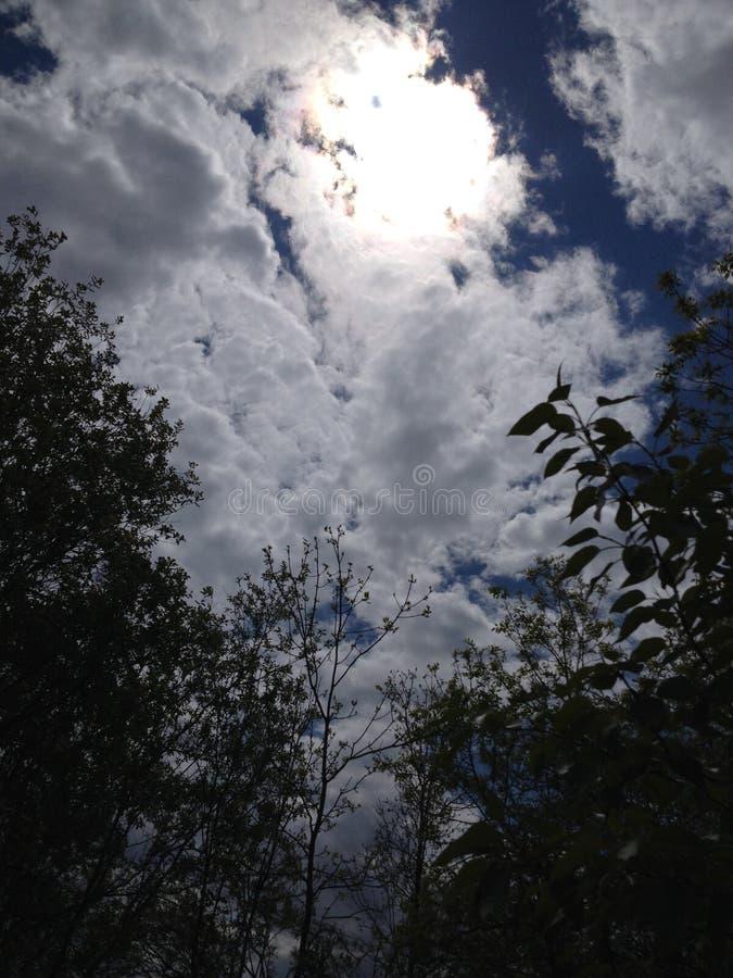 Día de veranos caliente fotos de archivo