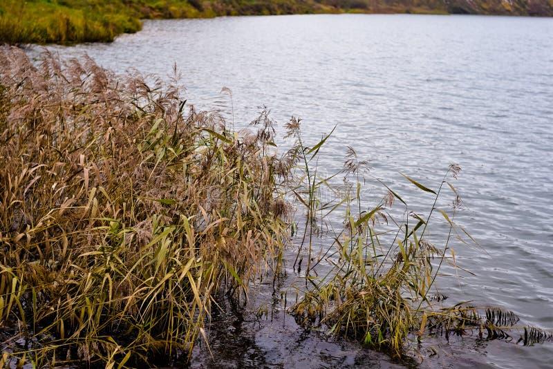 Día del agua del otoño en octubre imagen de archivo