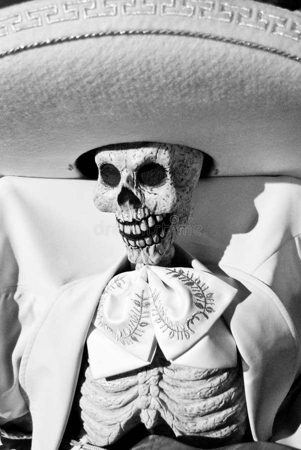 Día del esqueleto musical muerto fotografía de archivo libre de regalías