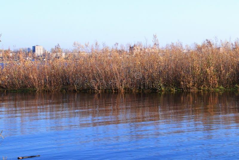 Día del otoño en Arkhangelsk Isla Krasnoflotsky La reflexión en el agua imagenes de archivo