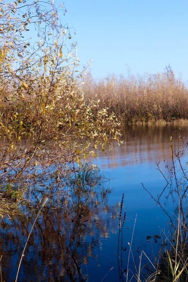 Día del otoño en Arkhangelsk Vista del río Dvina septentrional y puerto fluvial en Arkhangelsk fotografía de archivo