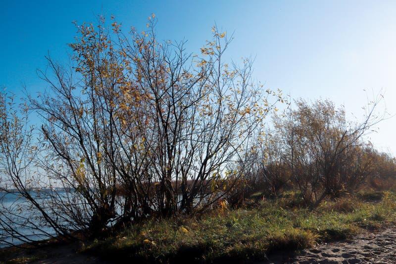 Día del otoño en Arkhangelsk Vista del río Dvina septentrional y puerto fluvial en Arkhangelsk foto de archivo
