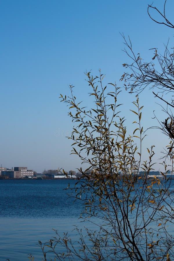 Día del otoño en Arkhangelsk Vista del río Dvina septentrional y puerto fluvial en Arkhangelsk imágenes de archivo libres de regalías