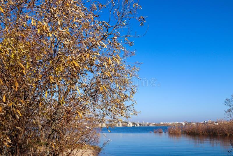 Día del otoño en Arkhangelsk Vista del río puente septentrional de Dvina y del automóvil en Arkhangelsk imágenes de archivo libres de regalías
