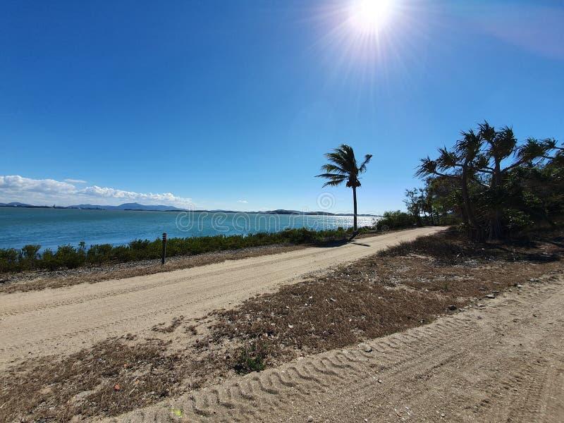 Día del viento en el rescate de la tortuga de la isla de Quoin imagen de archivo