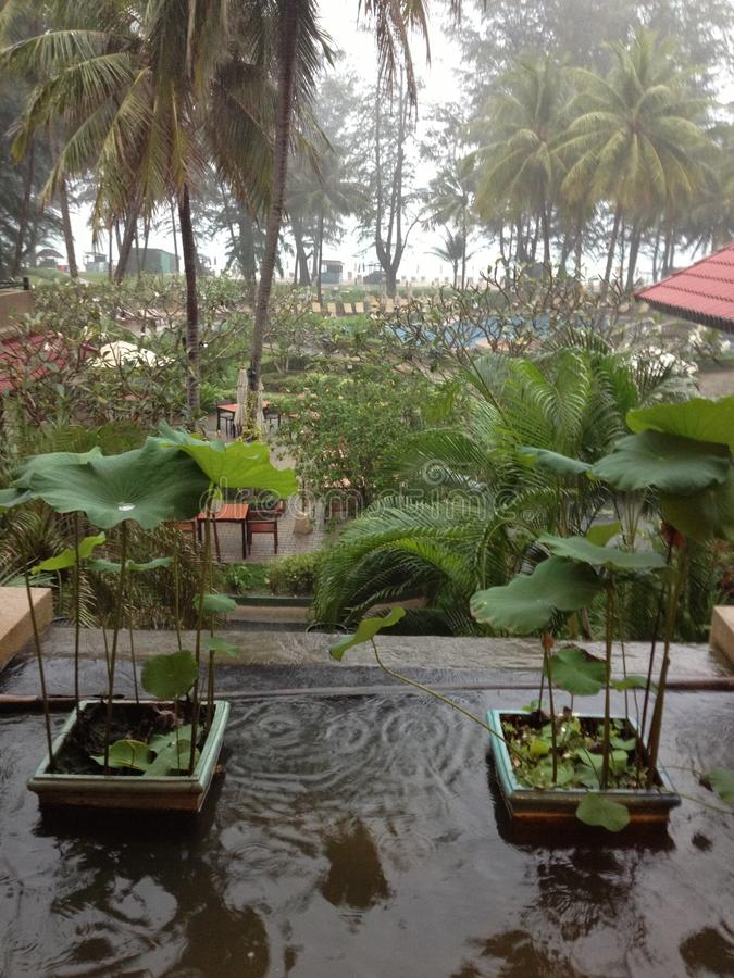 Día lluvioso de Tailandia fotos de archivo libres de regalías