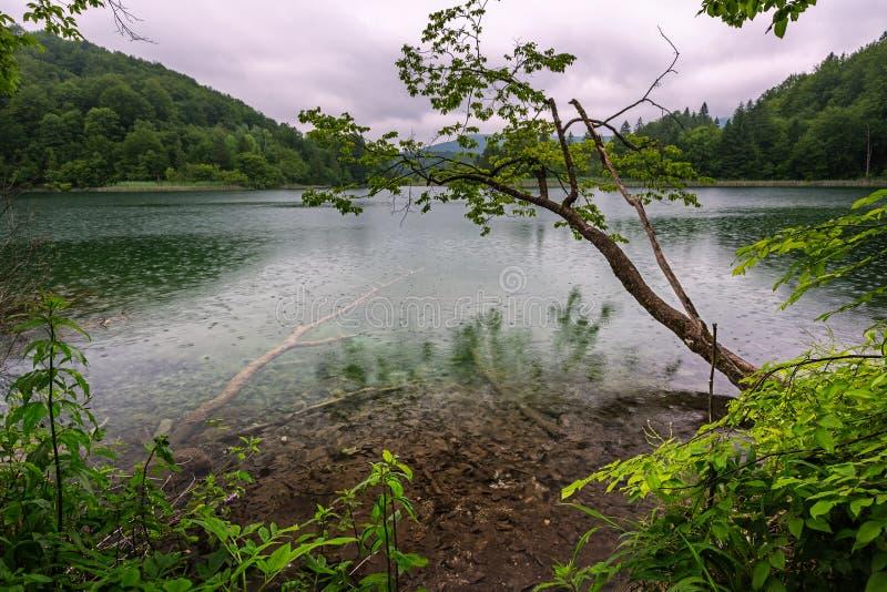 Día lluvioso en parque nacional de los lagos Plitvice imágenes de archivo libres de regalías