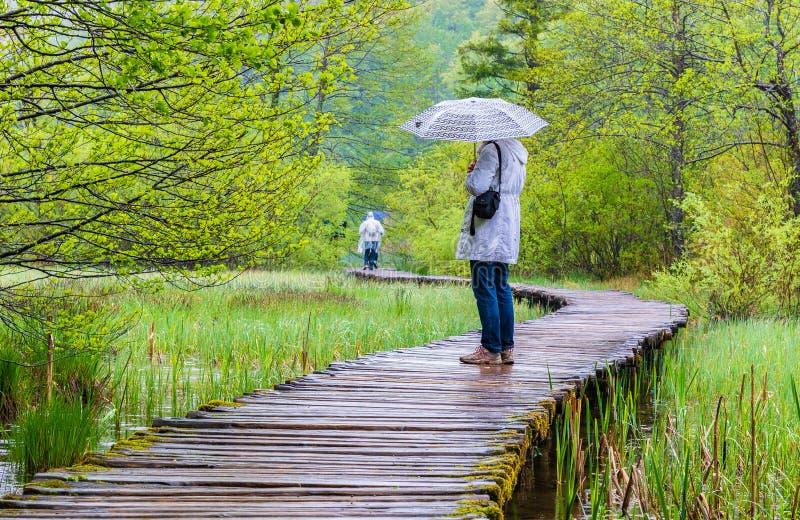 Día lluvioso y paseo turístico en Plitvice fotografía de archivo