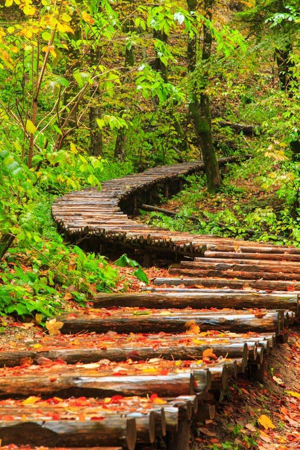 Día lluvioso y trayectoria turística de madera en Plitvice fotografía de archivo