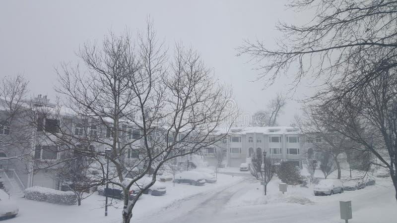 día nevoso fotos de archivo libres de regalías