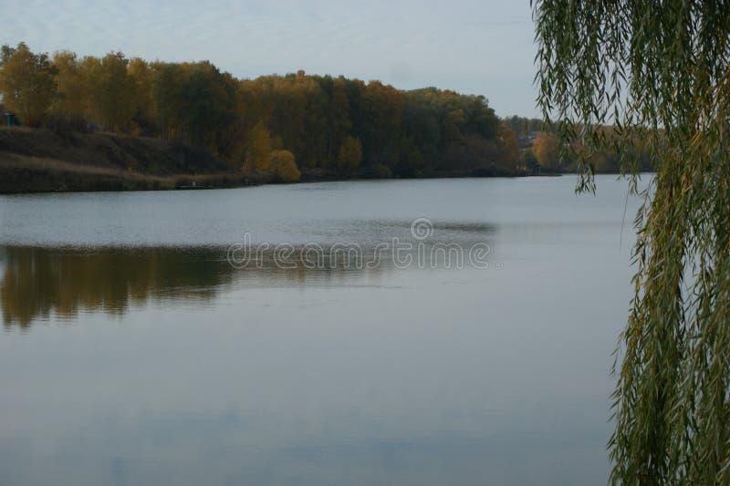 Día reservado del otoño El viento fácil se preocupa una superficie del agua suavemente fotos de archivo