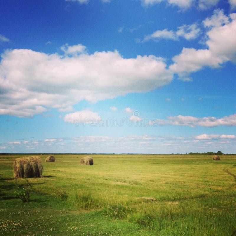 Día soleado del país imagen de archivo libre de regalías