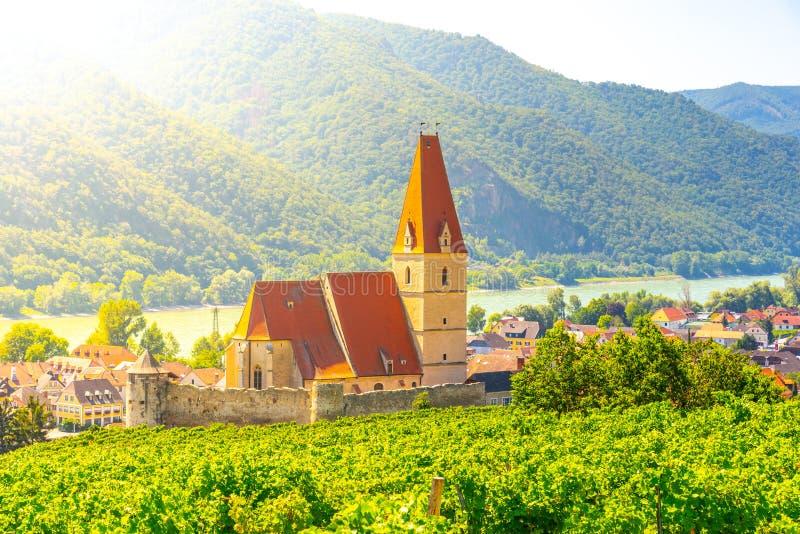 Día soleado en el valle de Wachau Paisaje de viñedos y del río Danubio en Weissenkirchen, Austria imagen de archivo