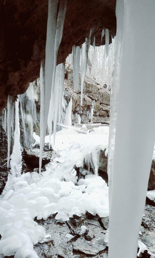 Días de invierno fotografía de archivo libre de regalías