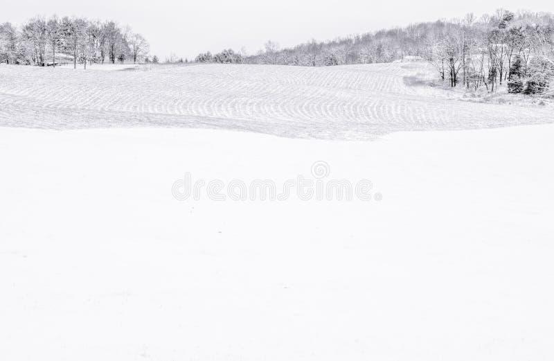 Días solos de invierno imagen de archivo libre de regalías