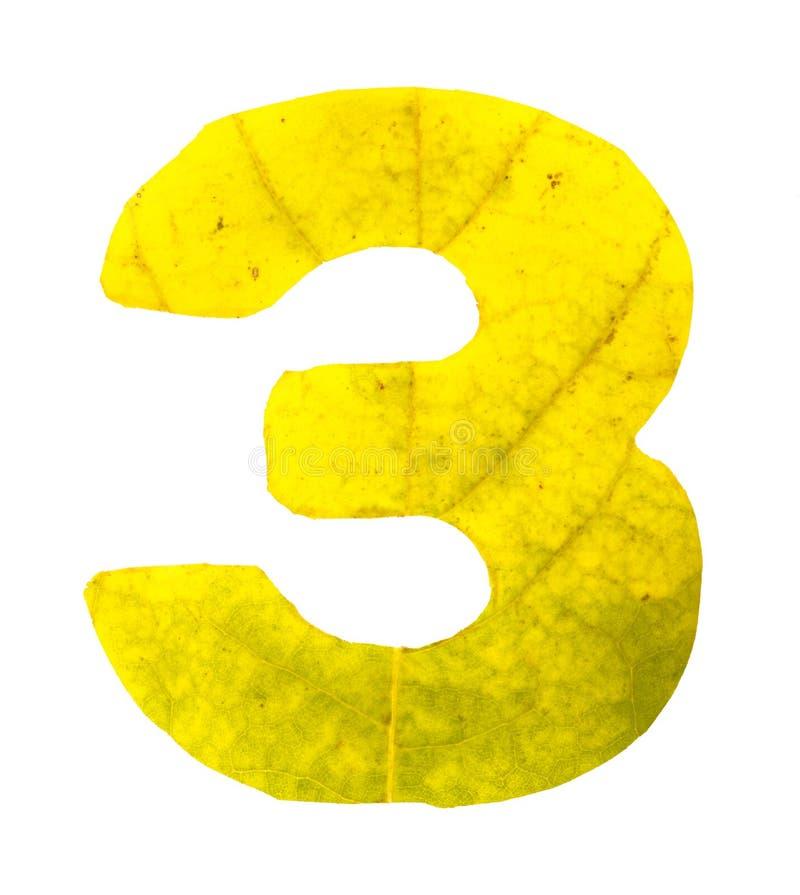 Dígito 3 tallado de las hojas de otoño foto de archivo
