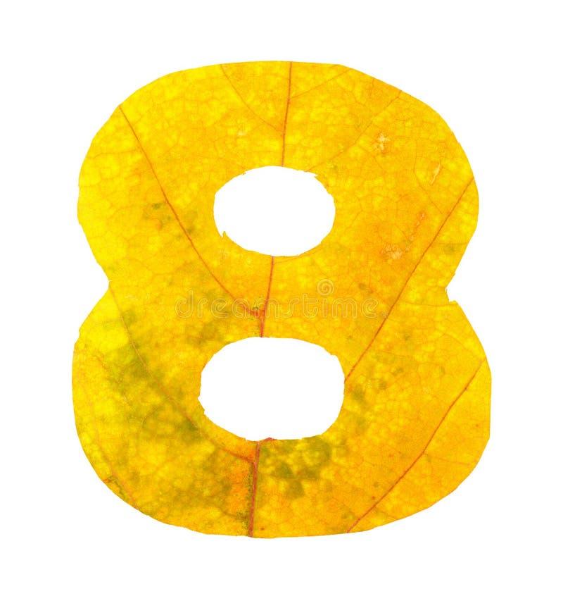 Dígito 8 tallado de las hojas de otoño fotografía de archivo libre de regalías
