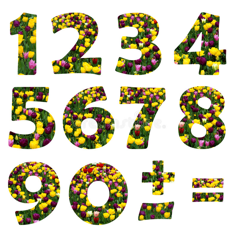 Dígitos florais ilustração stock