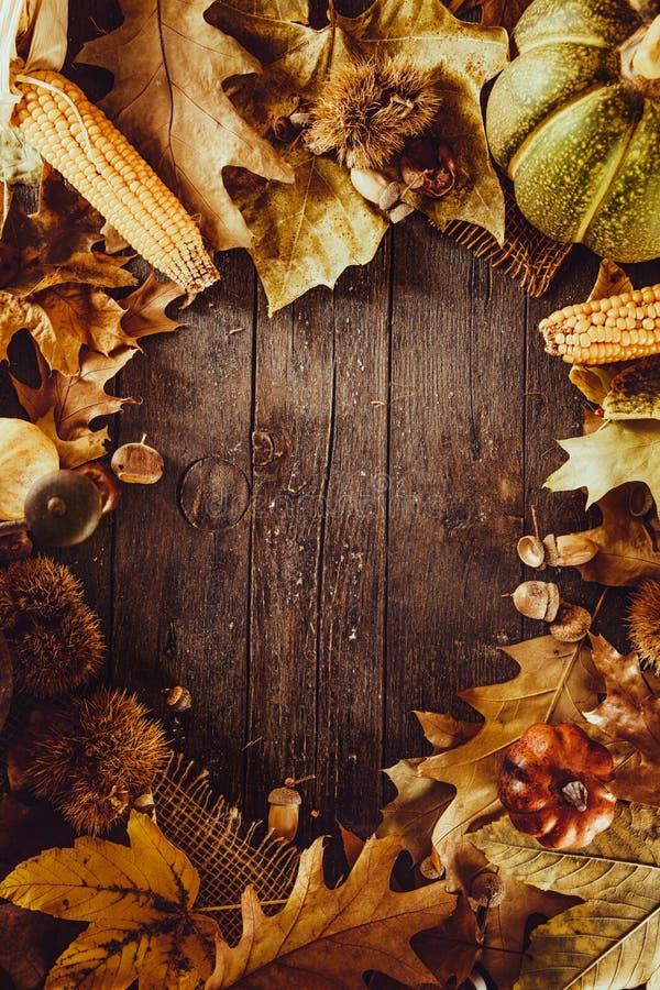 Download Dîner de thanksgiving image stock. Image du couteau, sain - 77151583