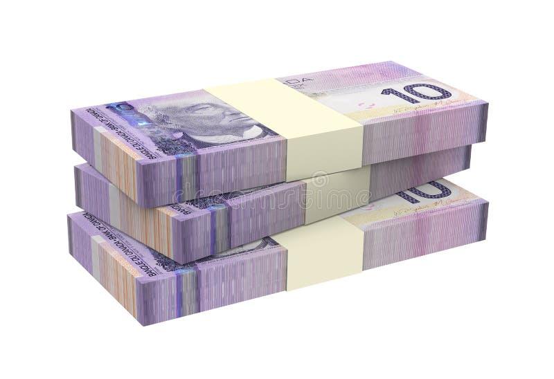 Dólares canadenses do dinheiro isolado no fundo branco ilustração do vetor
