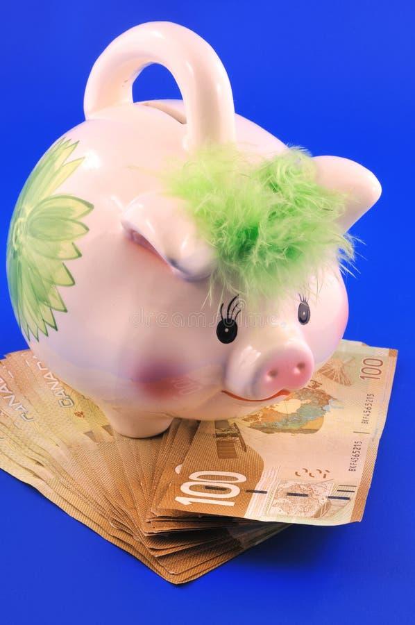 Dólares canadienses foto de archivo
