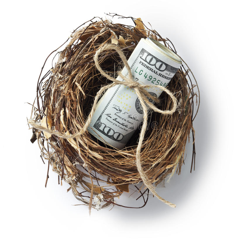 Dólares do ninho do dinheiro foto de stock royalty free
