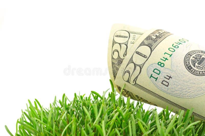 Dólares na grama verde imagens de stock royalty free