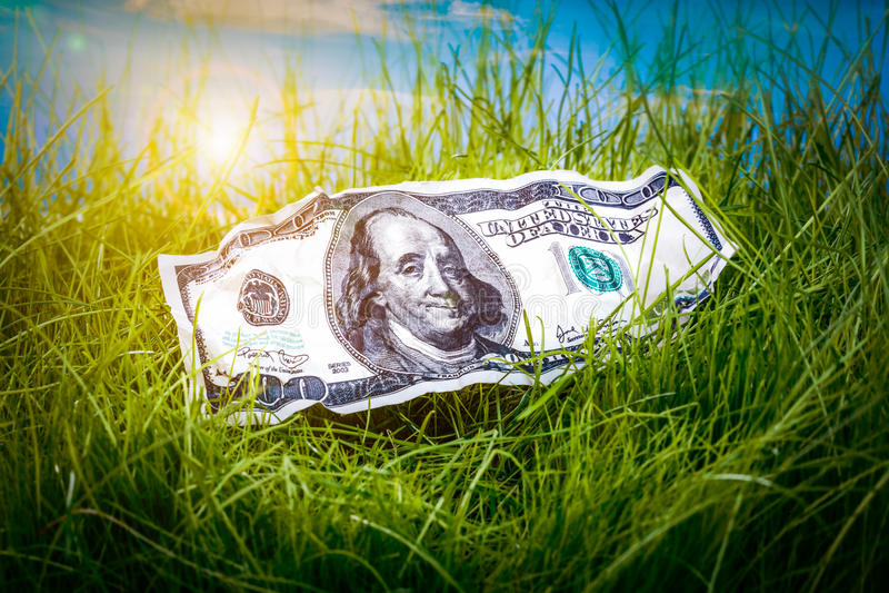 Dólares na grama verde imagem de stock