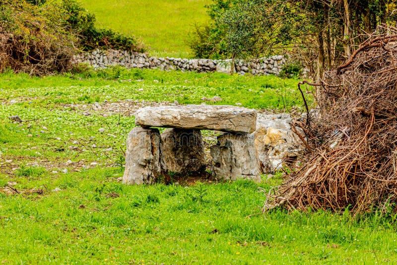 Dólmem irlandês em um prado com mato seco e grama verde fotos de stock royalty free