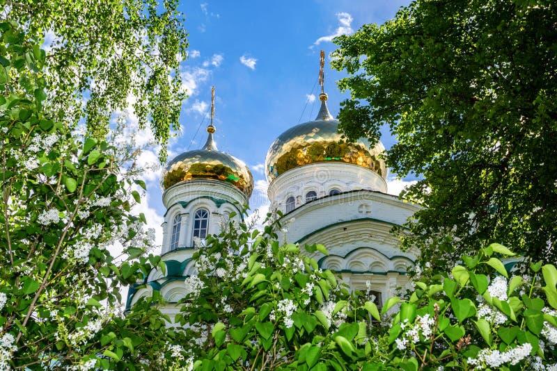 Dômes d'or de la cathédrale de trinité sainte images libres de droits