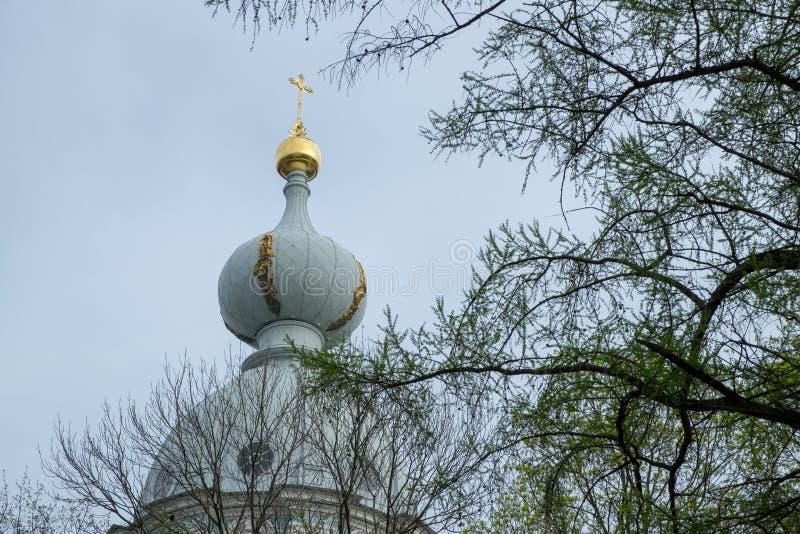 Dômes dorés de Catherine Palace photographie stock libre de droits
