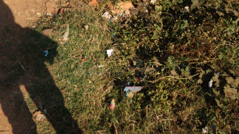 Dö vegetation vid skuggan av mänskligheten fotografering för bildbyråer