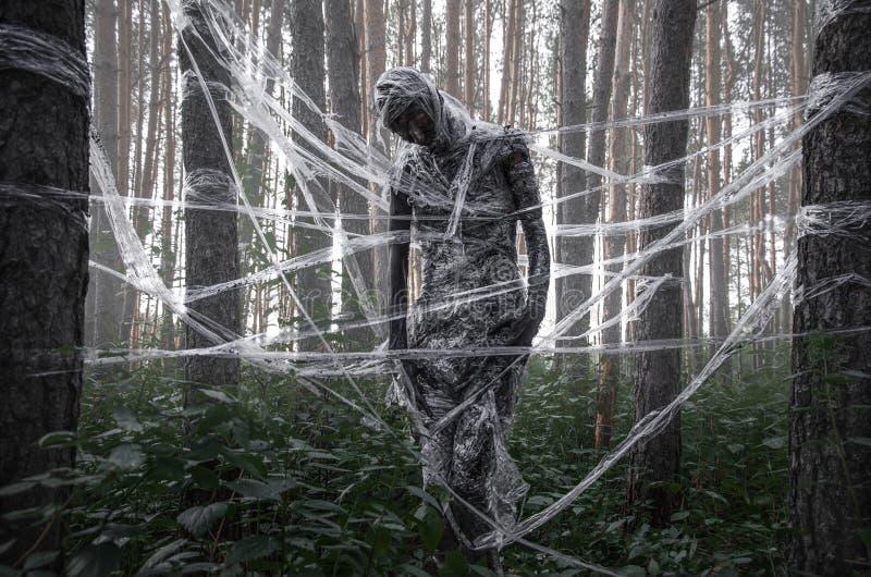 Död i skogen royaltyfri foto