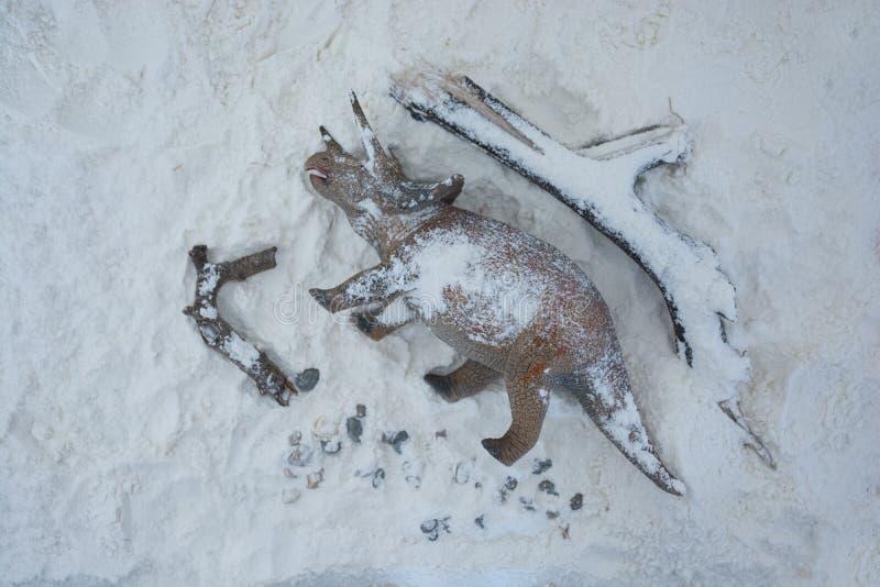 Död triceratops in i snön under utplåningeran fotografering för bildbyråer