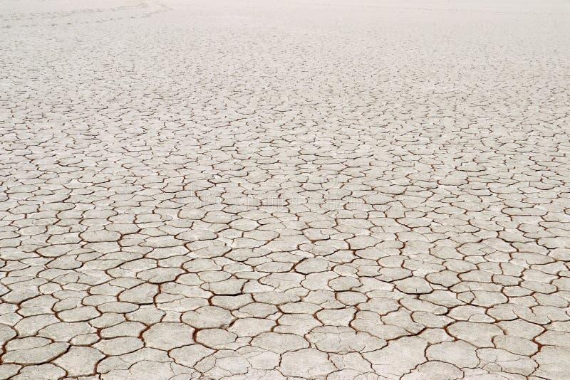 Död Vlei - torr jord - Namibia Afrika royaltyfri bild
