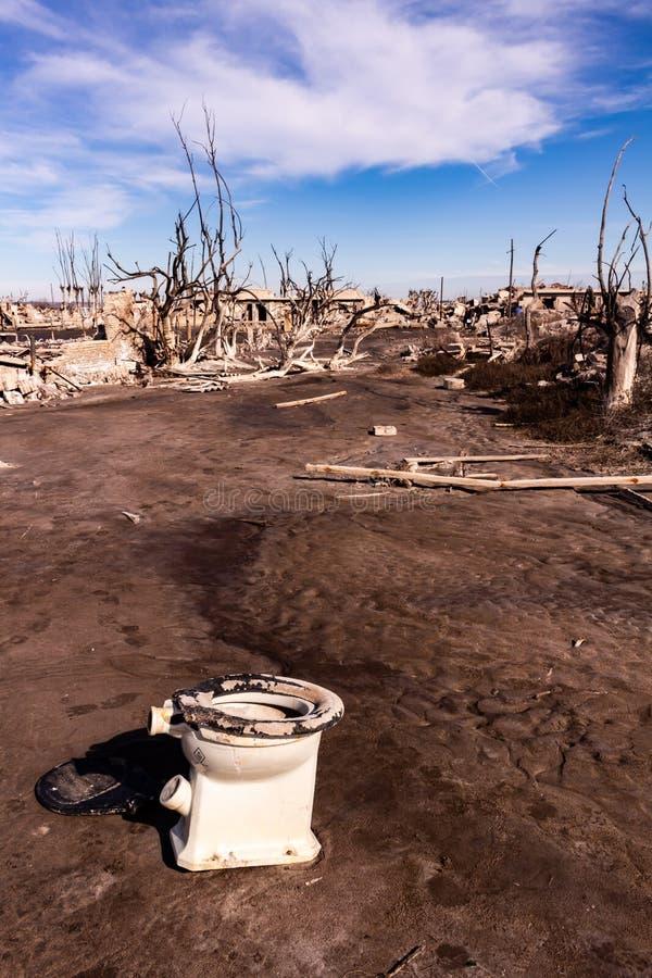 Döda träd i staden av Epecuen Ensamt landskap utan folk arkivbild