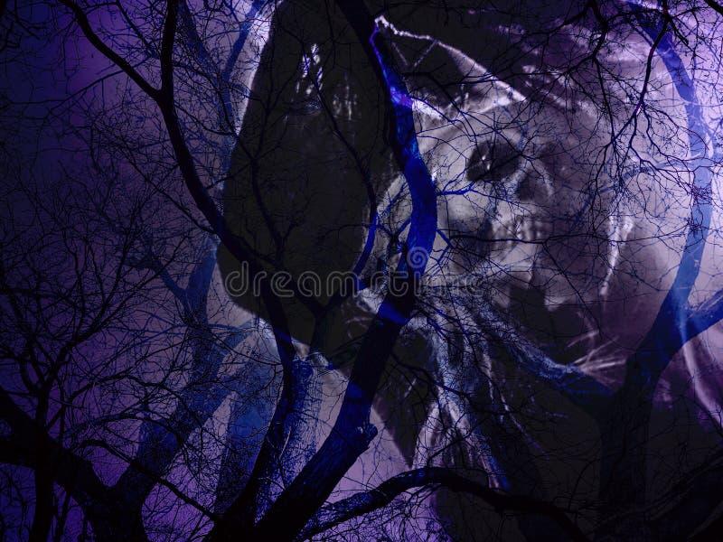 Döda träd med skallespöken i mystiska skuggor i ljus - lilor färgar royaltyfri fotografi
