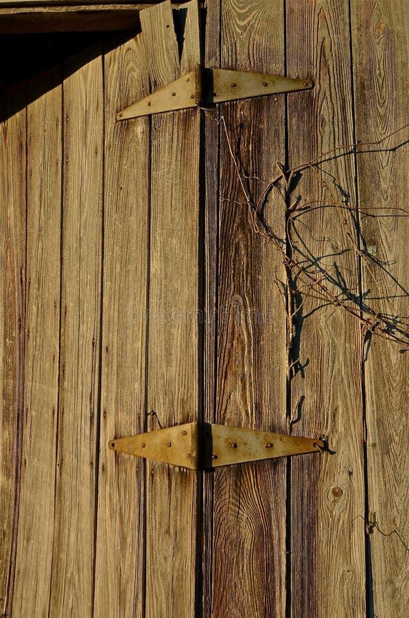 dörr ridit ut trä royaltyfri foto