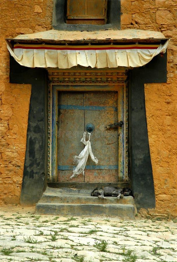 dörr tibet royaltyfria foton
