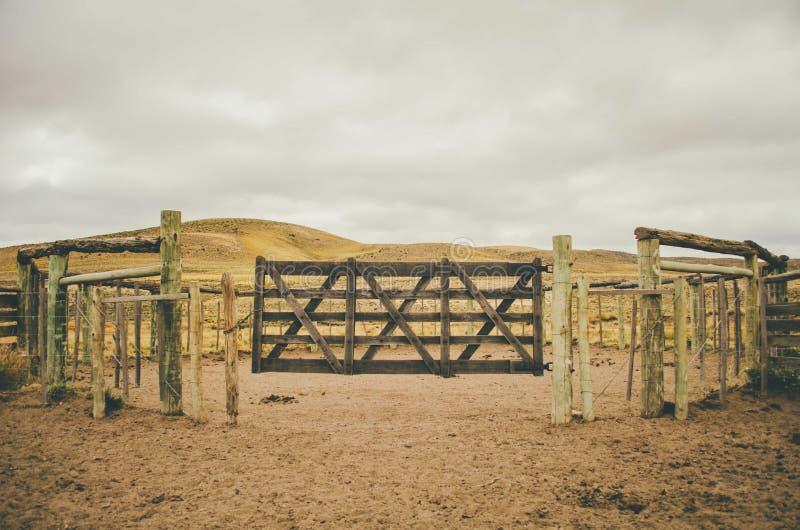 Dörrar av ingången av en ladugård för nötkreatur royaltyfri foto
