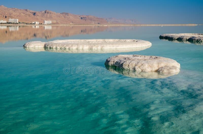 Dött hav som är salt på stranden på soluppgång arkivfoto
