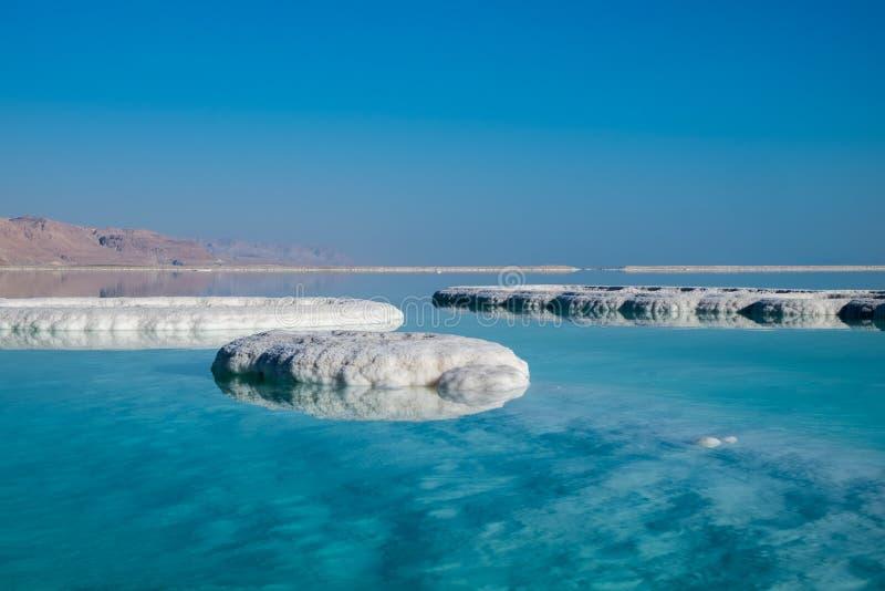 Dött hav som är salt på stranden på soluppgång royaltyfri fotografi