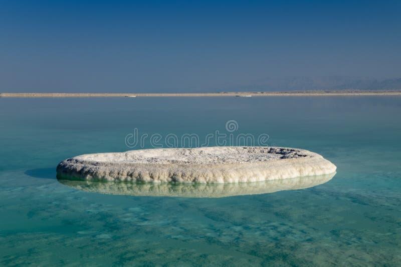 Dött hav som är salt på stranden på soluppgång royaltyfri foto