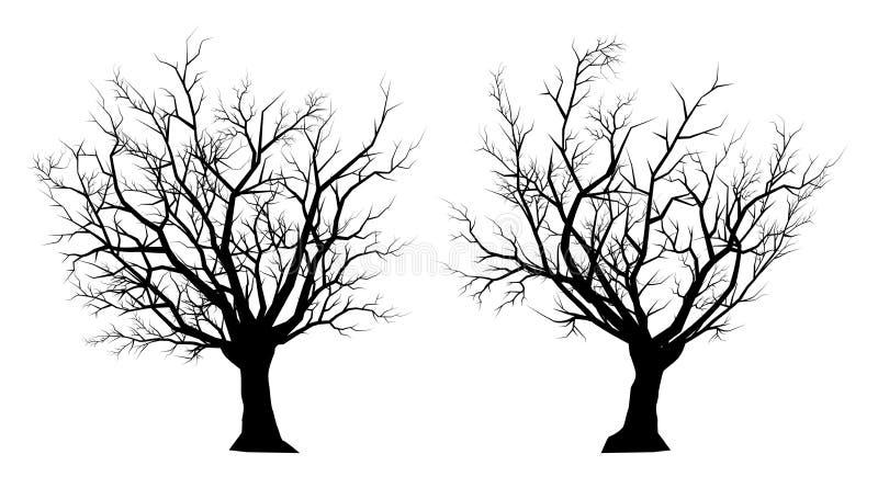 Dött träd för kontur på en vit bakgrund vektor illustrationer