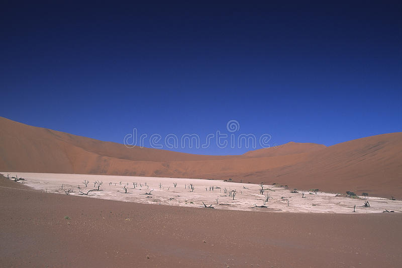 Düne von Park Namib Naukluft stockfotos