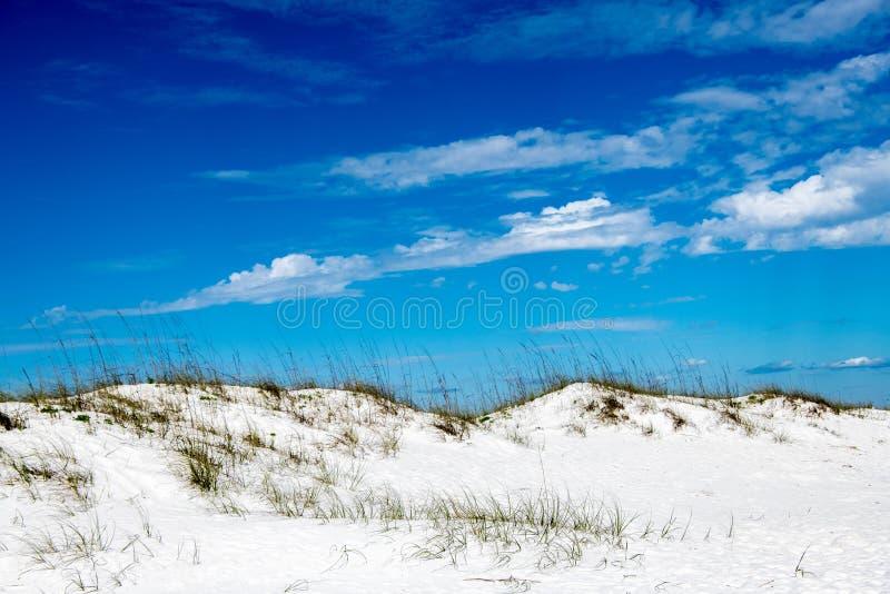 Dünen auf Pensacola-Strand stockfotos