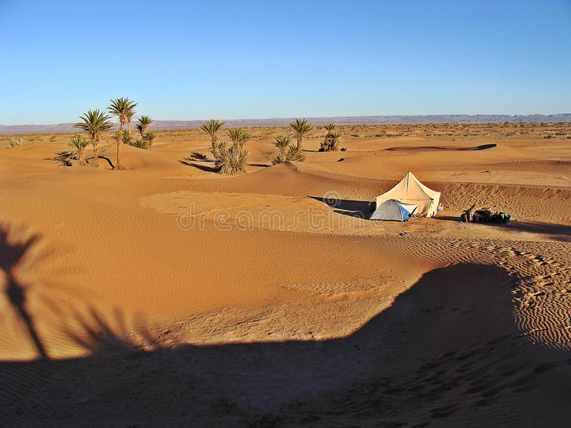 Dünen in der Marokkanersahara-Wüste lizenzfreie stockfotografie